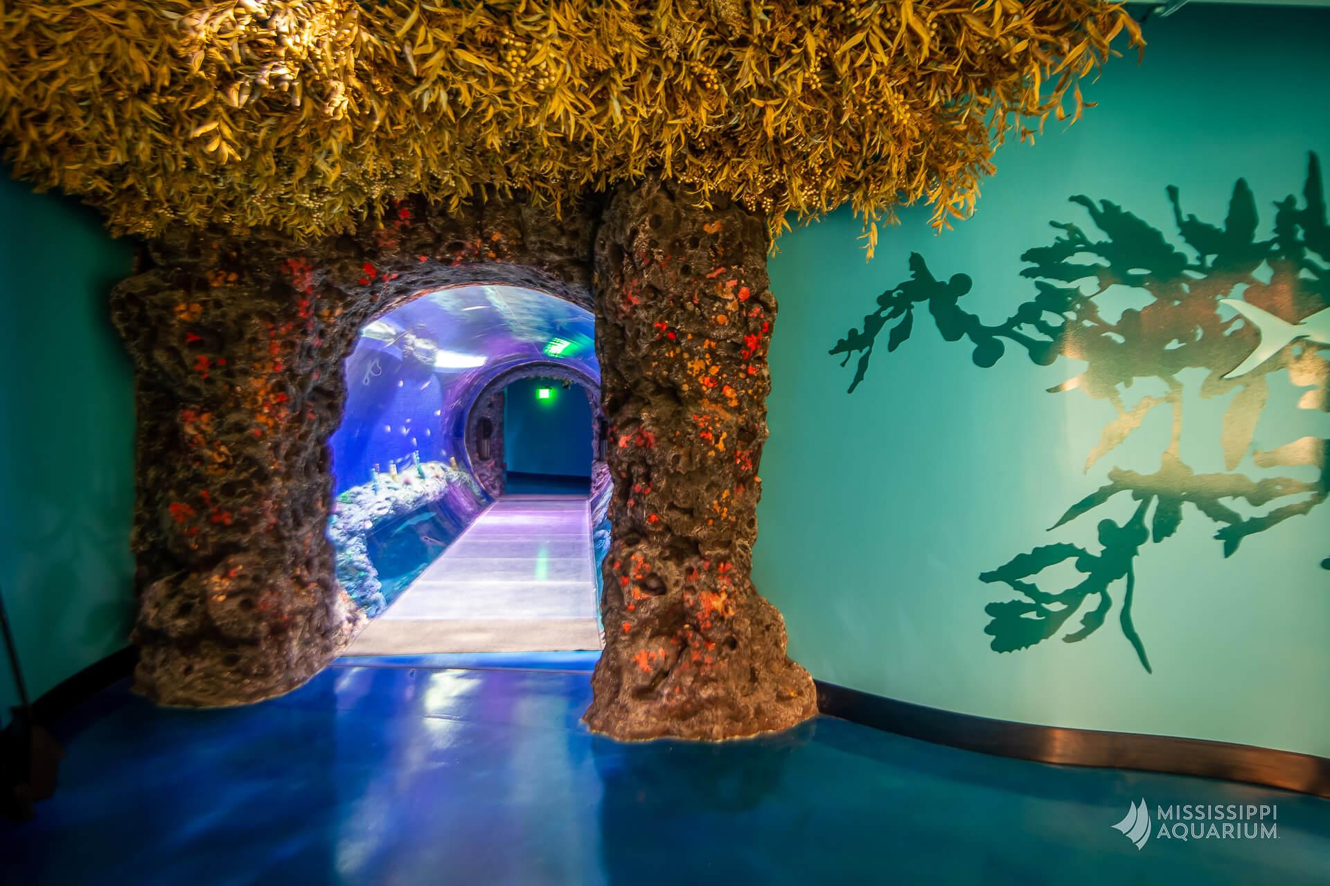 Mississippi Aquarium - Visit Mississippi