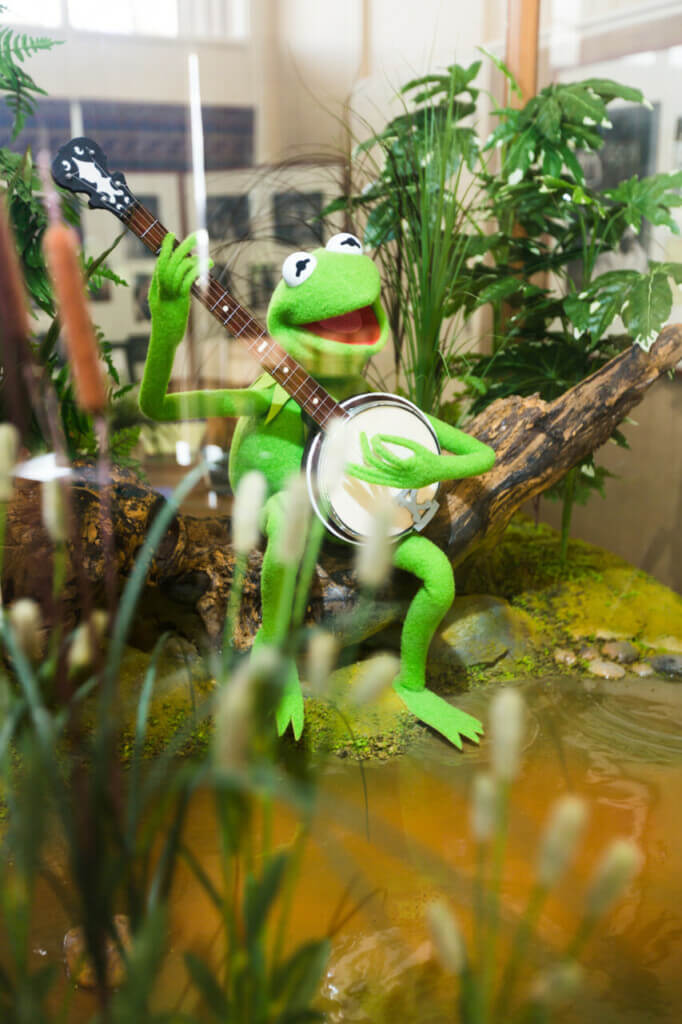 Kermit the frog playing banjo in museum
