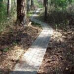 Bethel South Mountain Bike Trails
